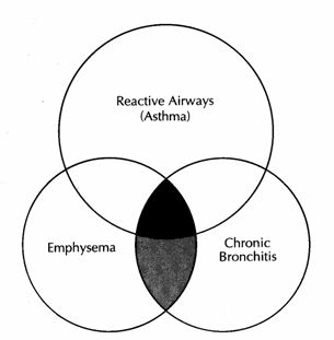 an introduction to chronic bronchitis Can chronic bronchitis be prevented or avoided if you smoke, the most important thing you can do is to stop the more smoke you breathe in, the more it damages your lungs.